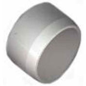 "Schedule 40 Pvc Cap Fitting, 1-1/2""Dia., White, 165-U - Pkg Qty 25"