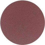 Delta 31-422 12 In. 80 Grit 2 Pc. PSA Aluminum Oxide Sanding Discs