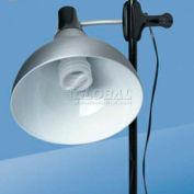 Daylight™ Artist Clip on Studio Lamp, Satin Silver
