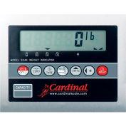 Detecto 204FWMPNTEP LCD Indicator W/ IP52 Enclosure, Flush Wall Mount