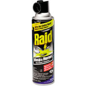 Raid® Wasp & Hornet Killer, 14 Oz. Aerosol 12/Case - DRACB013536CT