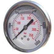 """Dynamic 2 1/2 """" Fluid Glycerine Filled Pressure Gage Center Back 300 PSI"""