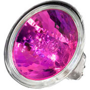 Ushio, 1003200, Light Bulb, MR16, 50 Watt, 12 Volts, Magenta