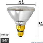 Osram Sylvania, 16728, Halogen Light Bulb, PAR38, 39 Watt, 120 Volts