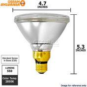 Osram Sylvania, 16732, Halogen Light Bulb, PAR38, 39 Watt, 130 Volts