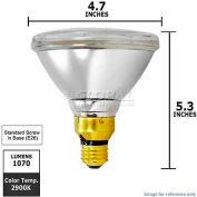 Osram Sylvania, 16738, Halogen Light Bulb, PAR38, 60 Watt, 120 Volts
