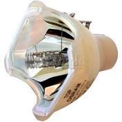Vidikron, Model 15ET CineWide Original Projector Bulb