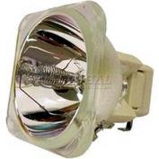 Apollo, PB6028 Original Projector Bulb
