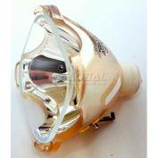 Saharas, S3000 LCD Original Projector Bulb
