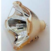 Marantz, VP8600 DLP Original Projector Bulb