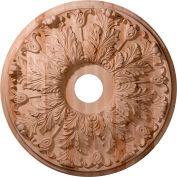 Ekena Carved Florentine Ceiling Medallion CMW24FL