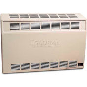 Empire Heating Systems Direct-Vent Wall Furnace & Wall Thermostat DV25SGNAT Natural Gas 25000 BTU