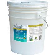 ECOS® Pro Manual Dish Detergent Liquid, Unscented, 5 Gallon Pail - PL9721/05