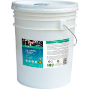 ECOS® Pro Orange Plus Concentrated All Purpose Cleaner, 5 Gallon Pail - PL9748/05