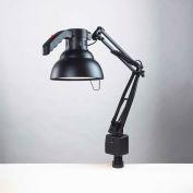 "Electrix 2012 Ergo Task Incandescent Light, Clamp-On, 30"" Reach, 120V, 100W"
