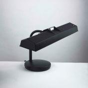 "Electrix 2066 12"" Fluorescent Gooseneck Lamp, T8 Dual Tube, 120V"