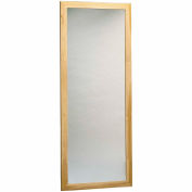 "Plate Glass Mirror, Wall Mount, Vertical, 22""W x 60""H"