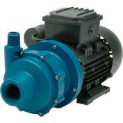 Finish Thompson DB3P-M612 Polypropylene Mag-Drive Pump 1/8HP,115V, 1 Phase,15 GPM