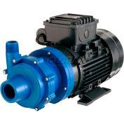 Finish Thompson DB5.5P-E-M622 Polypropylene Mag-Drive Pump 1/2HP,115V, 1 Phase,30 GPM