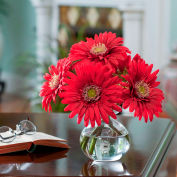 OfficeScapesDirect Gerbera Daisy Silk Flower Arrangement - Red