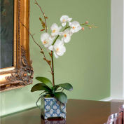 OfficeScapesDirect Phalaenopsis Orchid in Porcelain Silk Flower Arrangement - White