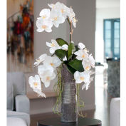 OfficeScapesDirect Deluxe Phalaenopsis Trio Silk Flower Arrangement - White