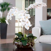 OfficeScapesDirect Deluxe Phalaenopsis Orchid Silk Flower Arrangement - White