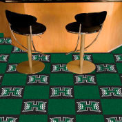 Fan Mats NHL - Dallas Stars Team Carpet Tiles - 15569