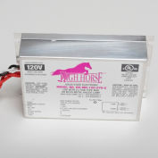 Fulham HH-MH-120-39-C HighHorse - Metal Halide - 120V - 39W - w/ Side Leads