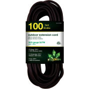 GoGreen Power, GG-13700BK, 100 Ft Extension Cord - Black