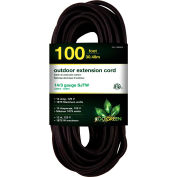 GoGreen Power, GG-13800BK, 100 Ft Extension Cord - Black