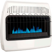 Dyna-Glo™ Natural Gas Blue Flame Vent Free Heater BF30NMDG - 30,000 BTU
