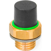 "Brass Breather Valve with Plastic Cap - G 3/4"" Pipe Thread - J.W. Winco 883-G3/4-160-B-MS"
