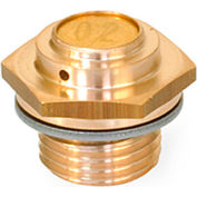 "Brass Breather Valve - Low Profile - G 1/4"" Pipe Thread - J.W. Winco 883-G1/4-160-A-MS"