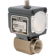 Gemini Valve® High Duty Cycle S/S Ball Valve W/Double-Acting Pneumatic Actuator, 1/4""