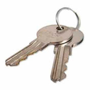 Hunter 122516 Replacement Keys For Controller Cabinets