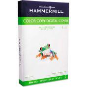 "Hammermill® Copier Digital Cvr Stock 120037, 11"" x 17"", Photo White, 250/Pack"