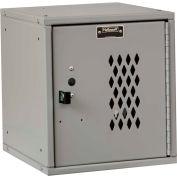 Hallowell HC121212 Cubix Modular Locker, Padlockable, 12x12x12, Diamond Perforated Door,Platinum