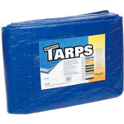 50' x 100' Light Duty 2.9 oz. Tarp, Blue - B50x100