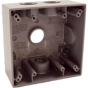 """Hubbell 5343-0 Two Gang Weatherproof Box 4-3/4"""" Outlets Gray - Pkg Qty 12"""