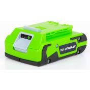 GreenWorks™ 29842 G-24 Lithium-Ion Battery, 24V, 2aH