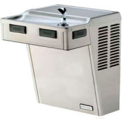 Halsey Taylor ADA Drinking Fountain, Non-Refrigerated, Filtered, HACDPV-WF