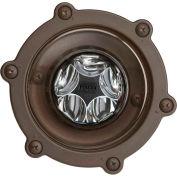 Kichler Lighting, 16038BBR30, 12V LED 14W 60 Deg. Wfl Well 30