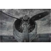 Sterling Industries,26-8674,Alton,World War Ii Airplane Print Etched Print On Aluminium
