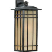 Quoizel Lighting, HCE8411IBFL, 1-Light Wall Lantern
