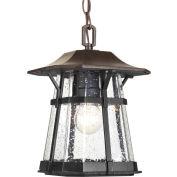 "Progress Lighting, P5579-84, One-Light Hanging Lantern (8.5"")"
