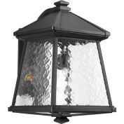 "Progress Lighting, P5999-31, One-Light Large Lantern (11"")"