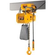 NER Dual Speed Elec Hoist w/ Motor Trolley - 1/8 Ton, 15' Lift, 55/9 ft/min, 460V