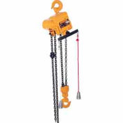TCR Air Hoist w/ Cord Control - 2 ton, 10' Lift, 11 ft/min