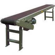 "Hytrol® Model TA 21'L Slider Bed Conveyor 21TA16 115V/1PH, 12""W Belt"